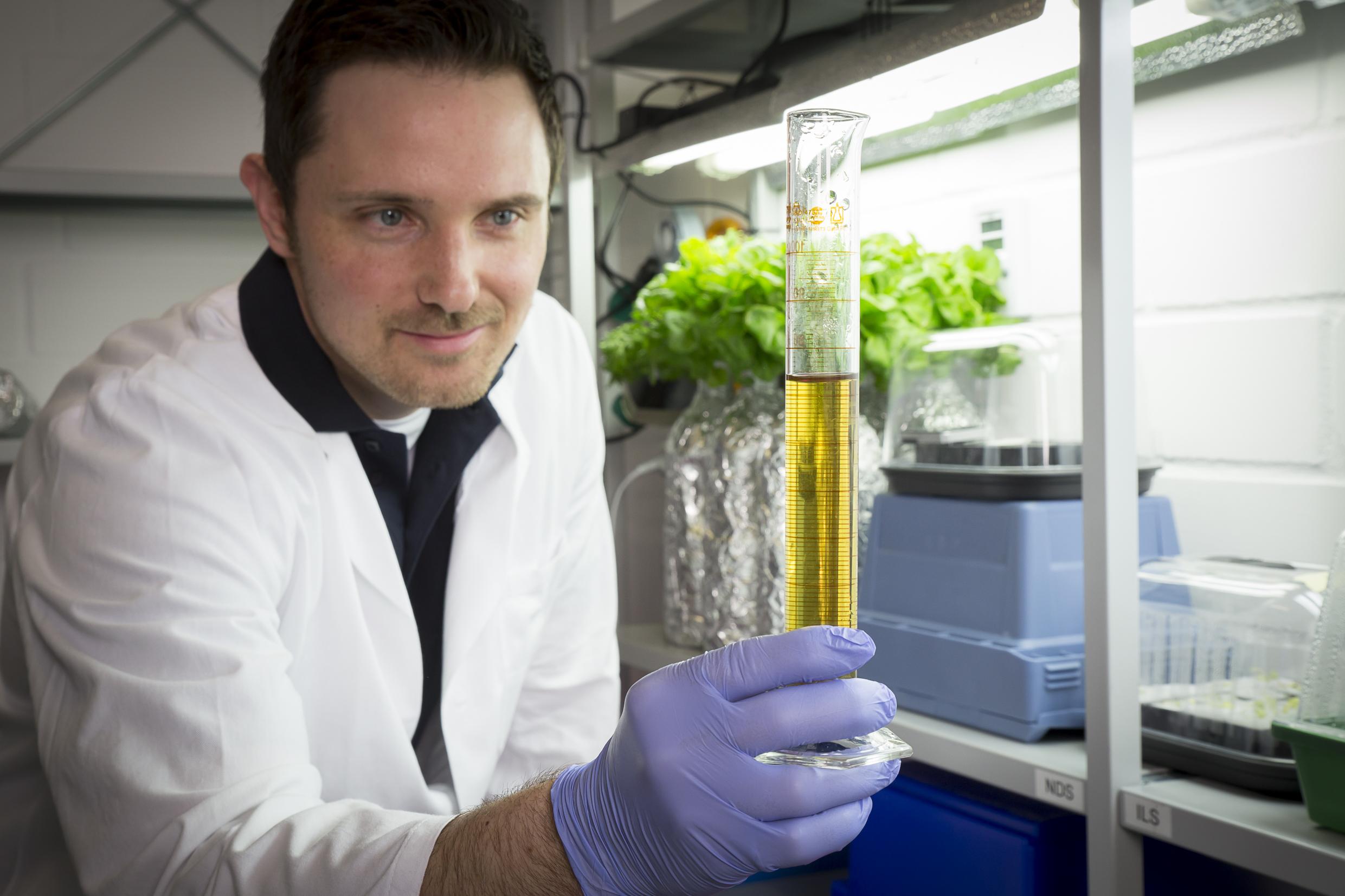 Matt mixing nutrients