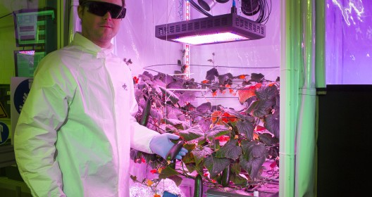 Paul in front of growth chamber 5